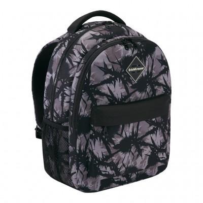 Школьный рюкзак ErichKrause EasyLine 20L Thistle
